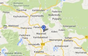 Kerala - Road Trip
